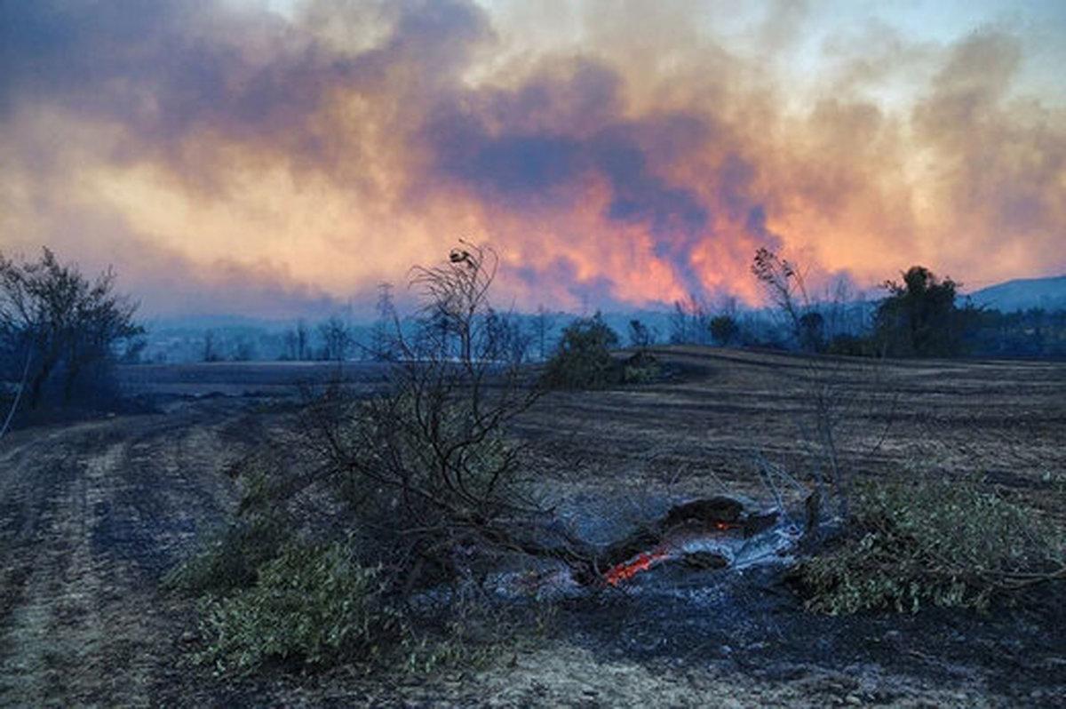 ادامه آتش سوزی در جنگلهای استان فارس