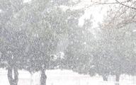 بارش برف در ۱۳ استان