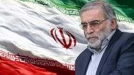 سفیر ایران در یمن:باشهادت امثال شهید فخریزاده راه پیشرفت علمی ایران متوقف نخواهد شد