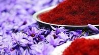 صادرات زعفران ایرانی به ۶۰کشور دنیا
