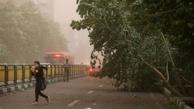 پیشبینی وزش باد شدید و رگبار در تهران