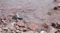 کاهش ۴۶۰ کیلومتری وسعت دریاچه ارومیه