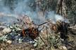 هشدار به افزایش احتمال آتشسوزی در عرصههای طبیعی
