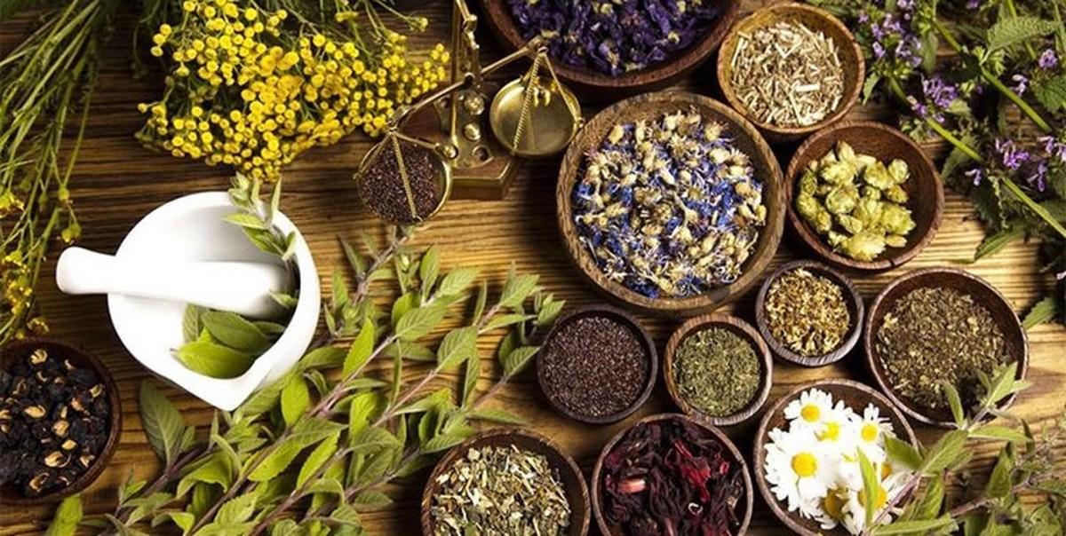 چرا طب سنتی را نقد میکنیم؟