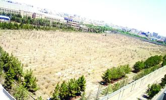 ٤٩هزار درخت از بین رفت |  از تغییر کاربری باغ سالاریه قم و اضافه شدن آن به خیابان