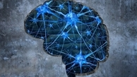 روش جدیدی برای درمان آلزایمر در سوئد کشف شد