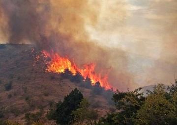 ۱۵۰ هکتار از جنگلهای کردکوی گلستان در آتش سوخت