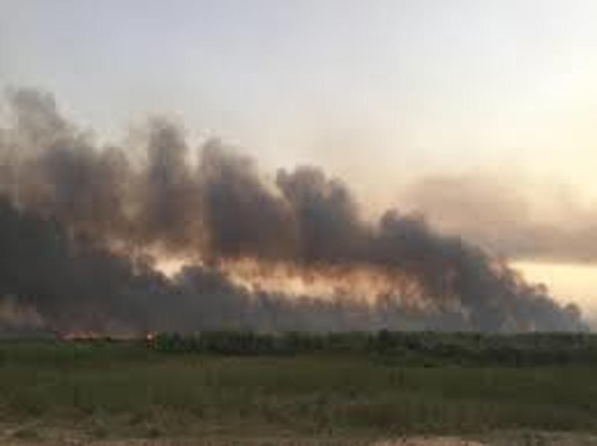 آتشسوزی دیگر درکشور   آتشسوزی بیش از ۳ هزار هکتار است