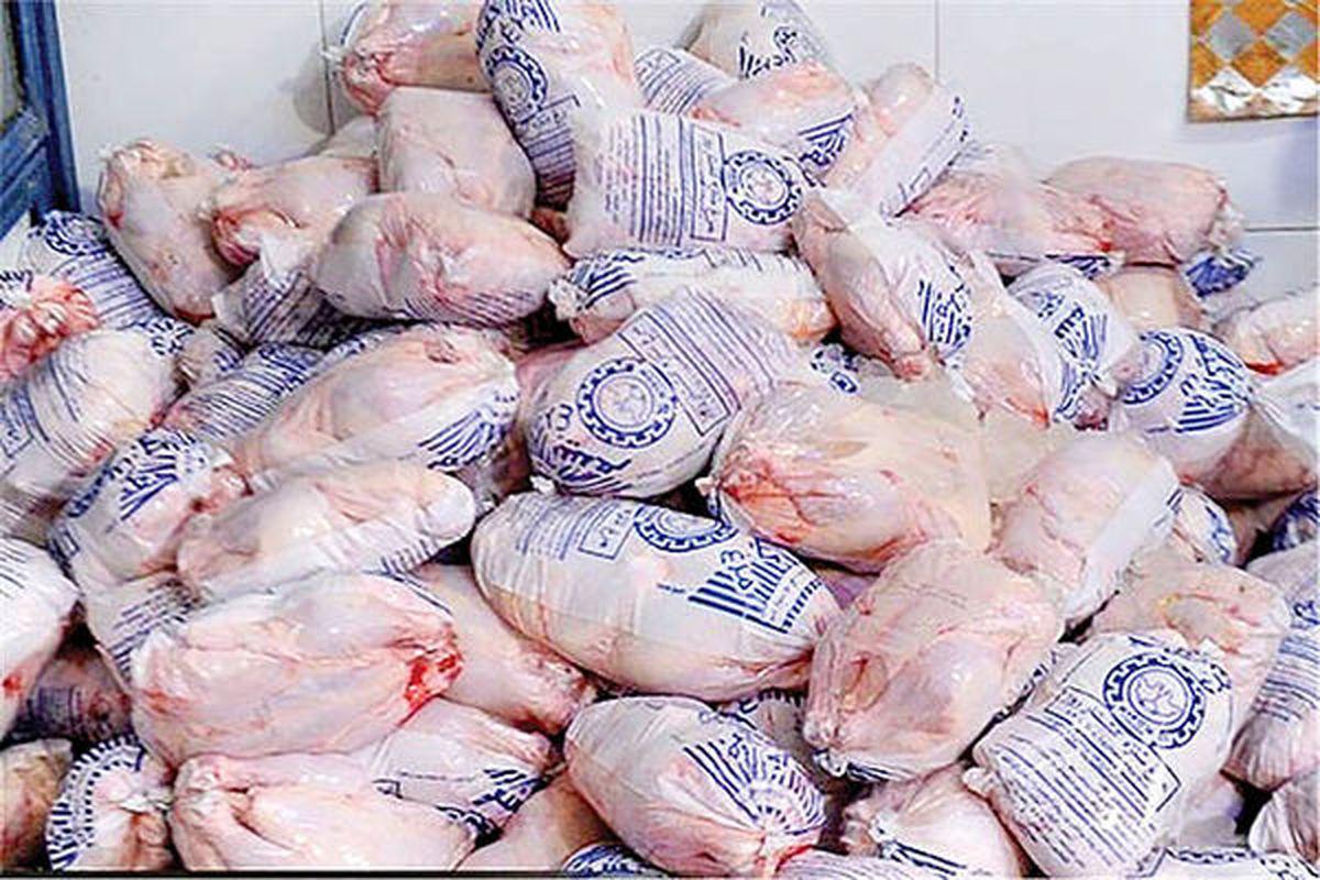 بازی مقرراتی با مرغ و تخممرغ | سیاست ممنوعیت صادراتی بار دیگر کلید خورد