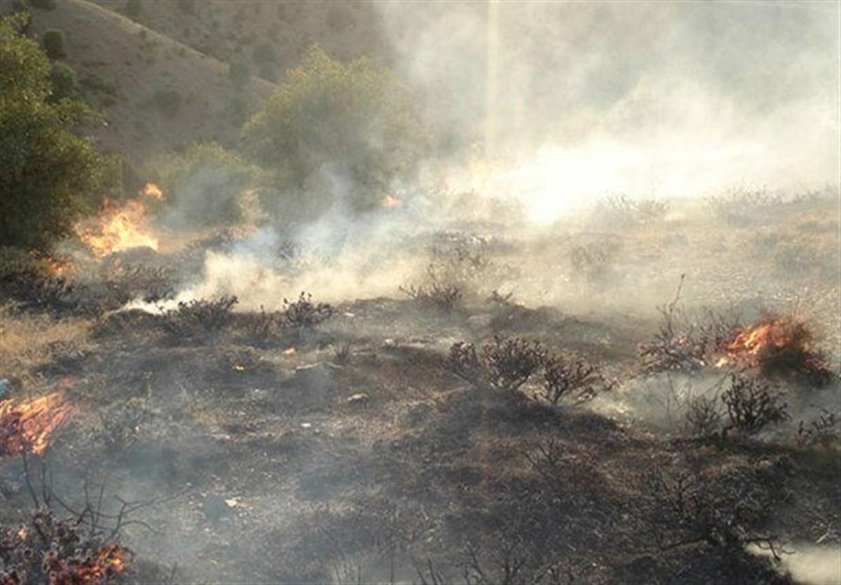 تداوم آتش سوزی درجنگلهای گچساران