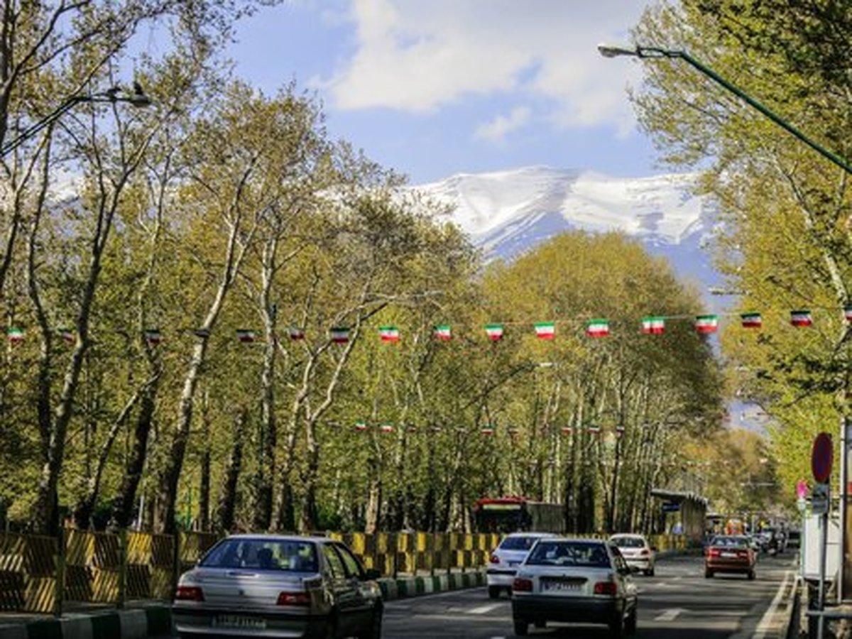 ارزش نیم میلیاردی درختان ولیعصر(عج) در تصفیه هوای پایتخت!