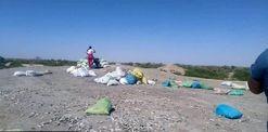 فروش ماهیهای مردهی رود خشک شده هیرمند برای کسب درآمد