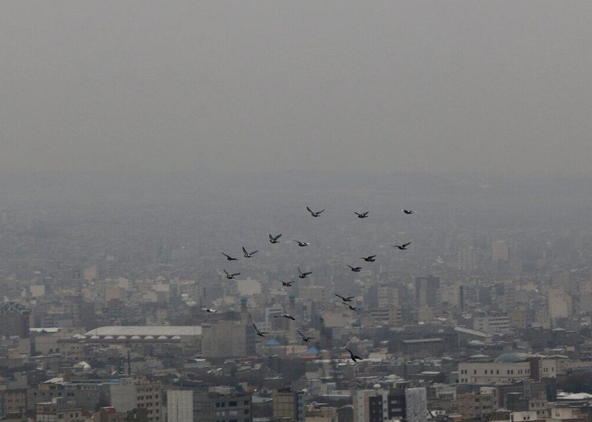 مرگ سالانه ۴۰ هزار ایرانی بر اثر آلودگی هوا؟