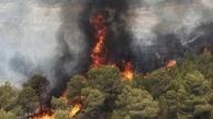 مهار آتشسوزی جنگلهای منطقه حفاظت شده «دیل» گچساران پس از ۴ شبانه روز