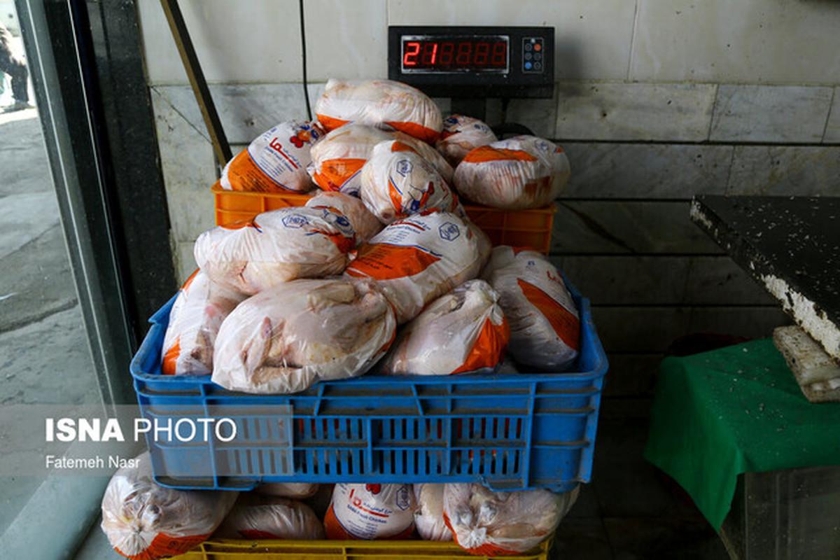 گرانی مرغ در سال جدید