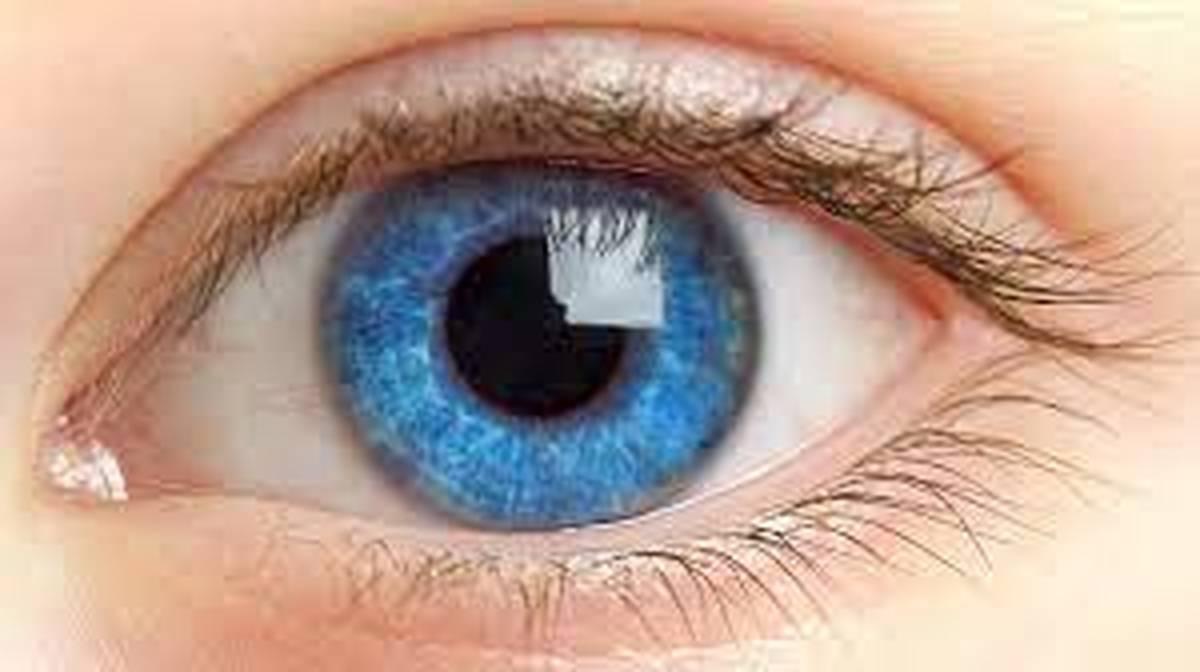 ماموریت دشوار سومین وزیر چشم پزشک عین اللهی با کرونا چه خواهد کرد