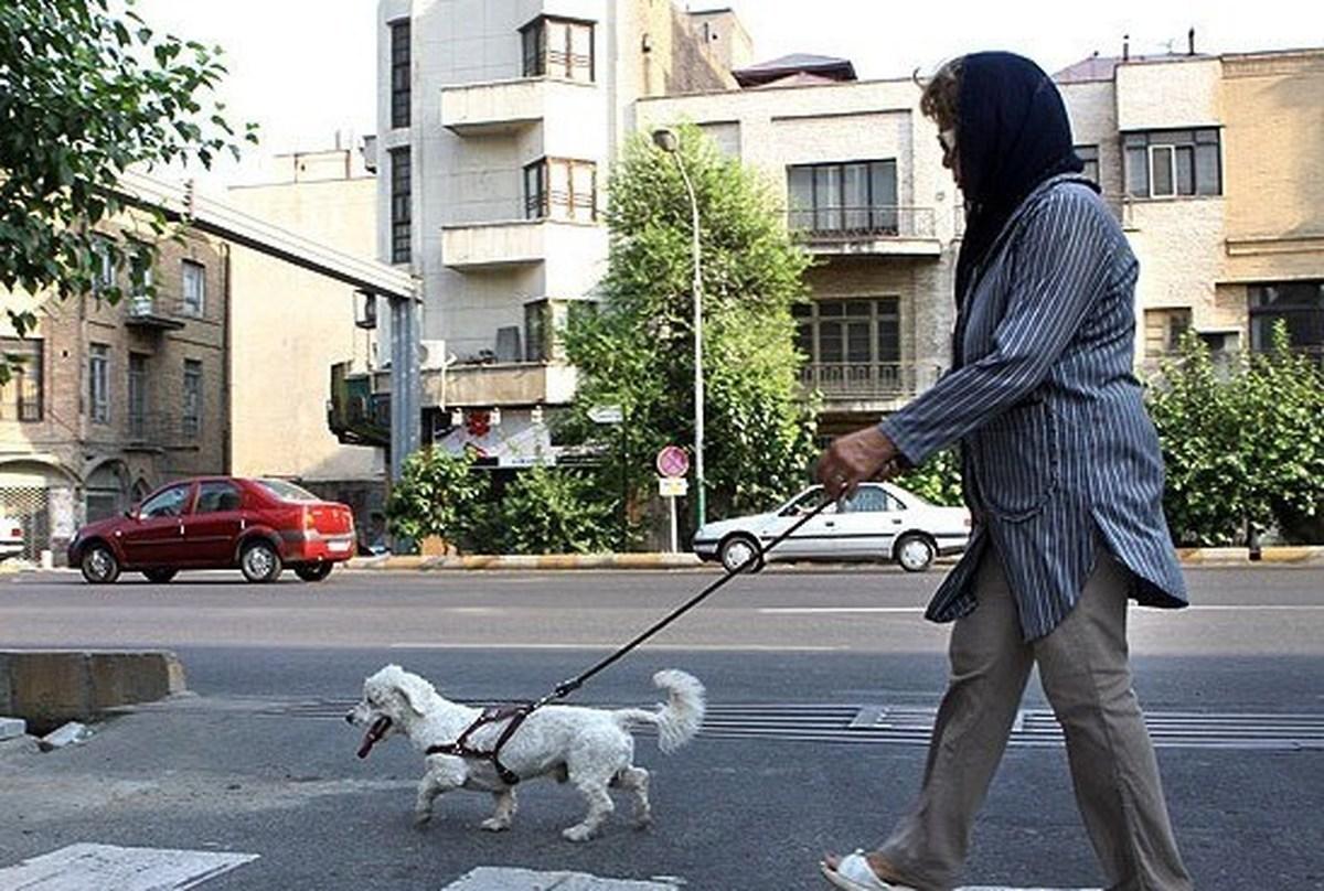 کیهان: سگ گردانی «معضل اساسی» جامعه است