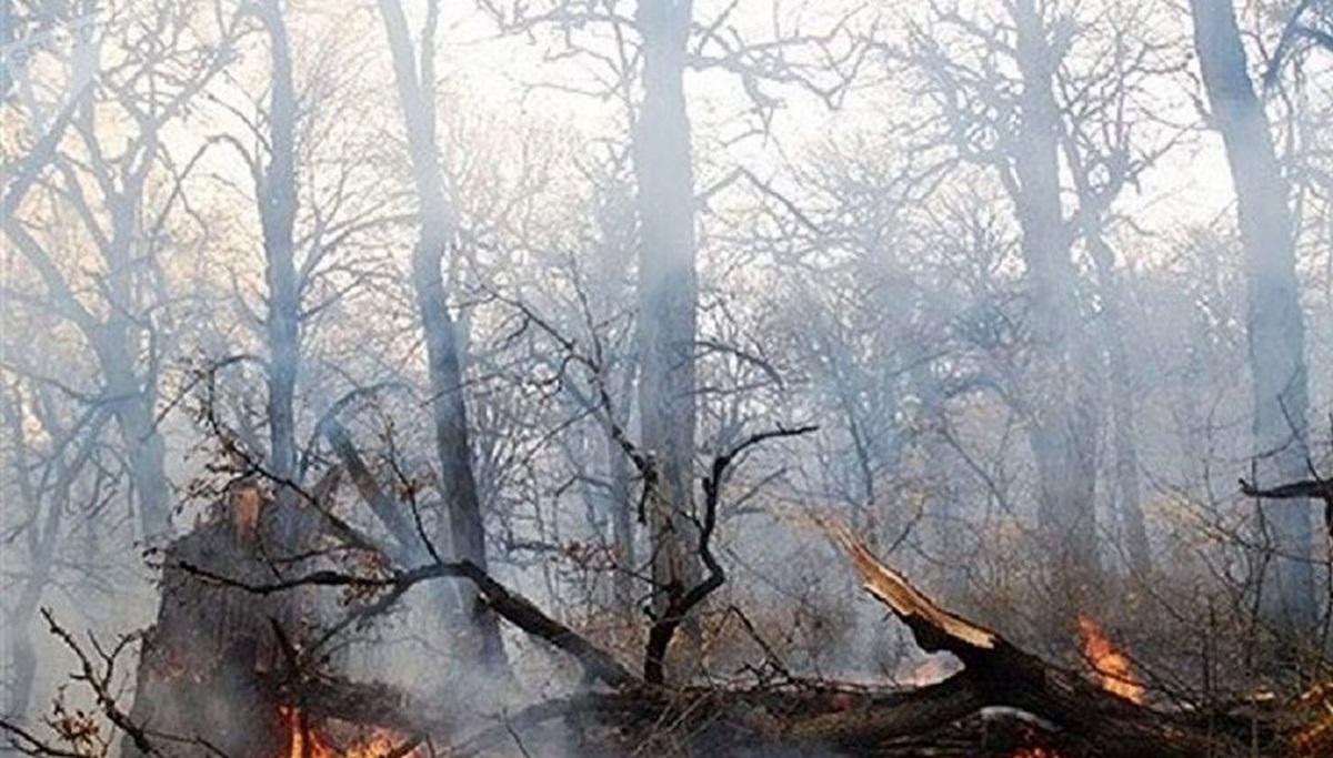 حریق  |  بین ۱۰ تا ۱۵ هکتار از اراضی جنگلی مازندران گرفتار حریق شد