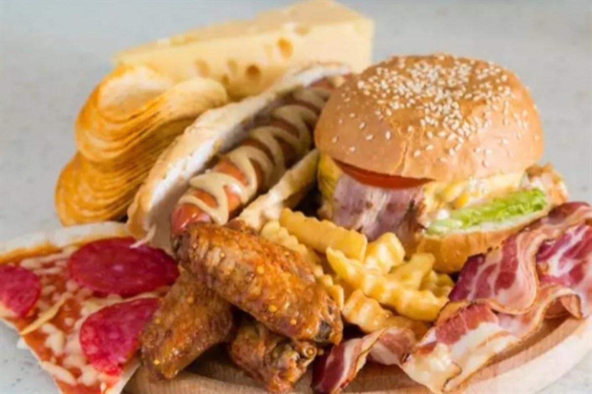 رژیم غذایی پرچرب باعث رشد میکروبهای مضر میشود