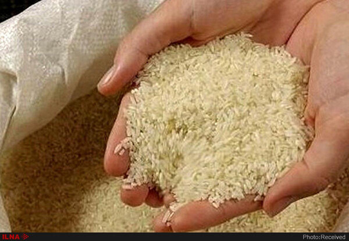 برنج های خارجی در سال ۹۹، ۱۱۳ درصد گران تر شده