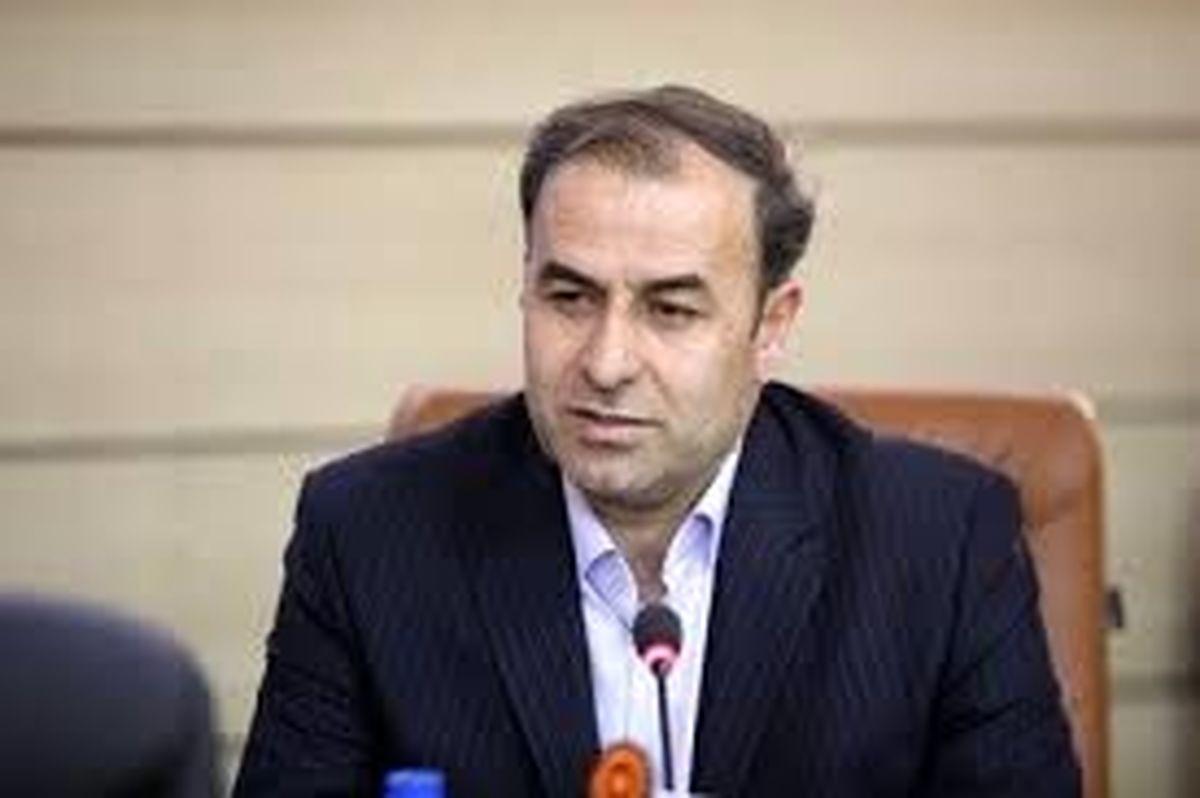 مدیرکل بهزیستی استان زنجان |  درخواست فرزندخواندگی اینترنتی شد