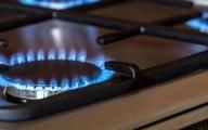 درخواست وزیر نفت برای صرفهجویی در مصرف گاز