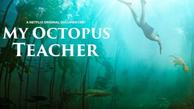 روایت اخت شدن با «اختاپوس» مستندسازی که به اقیانوس پناه برد