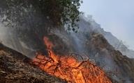جنگلهای گچساران در آتش سوخت ؛ اعزام چند هواپیما و بالگرد