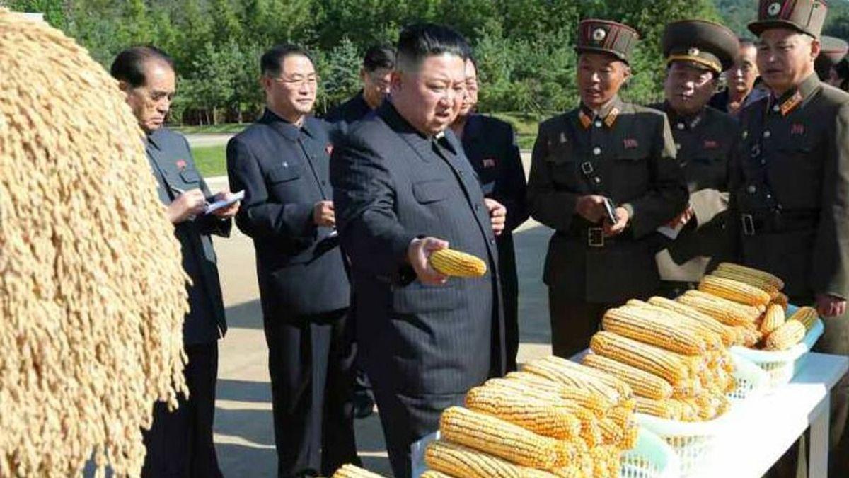 چرا کره شمالی غذای کافی ندارد؟