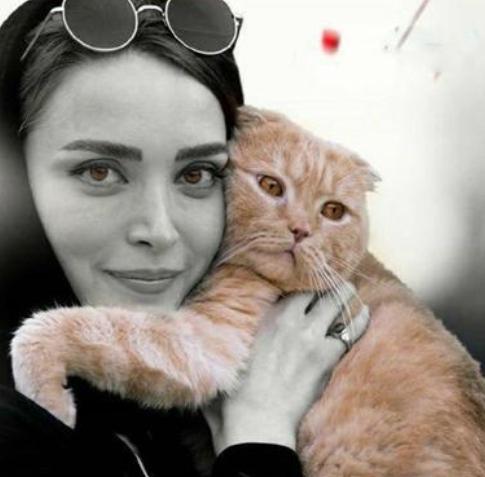 نمایش |حضور یک گربه باعث حذف یک اپیزود تئاتر رحمانیان شد