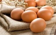 تخممرغ جایگزین گوشت شد   قیمت هر شانه تخم مرغ ۴۶ هزار تومان