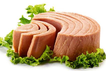 فواید و مضرات مصرف تن ماهی  | عجیبترین مضرات مصرف تن ماهی