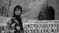دشت خاموش  |   فیلم احمد بهرامی گزینه مناسبی برای معرفی به اسکار