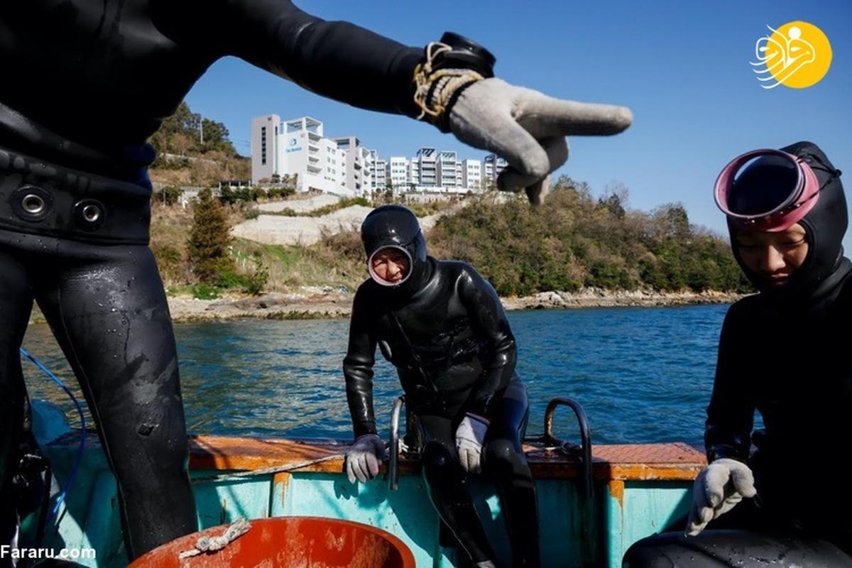 غواصی زنان کرهای بدون کپسول اکسیژن