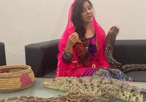 ویدئو : دو سال زندان برای نقض قوانین نگهداری از حیوانات برای خواننده پاکستانی