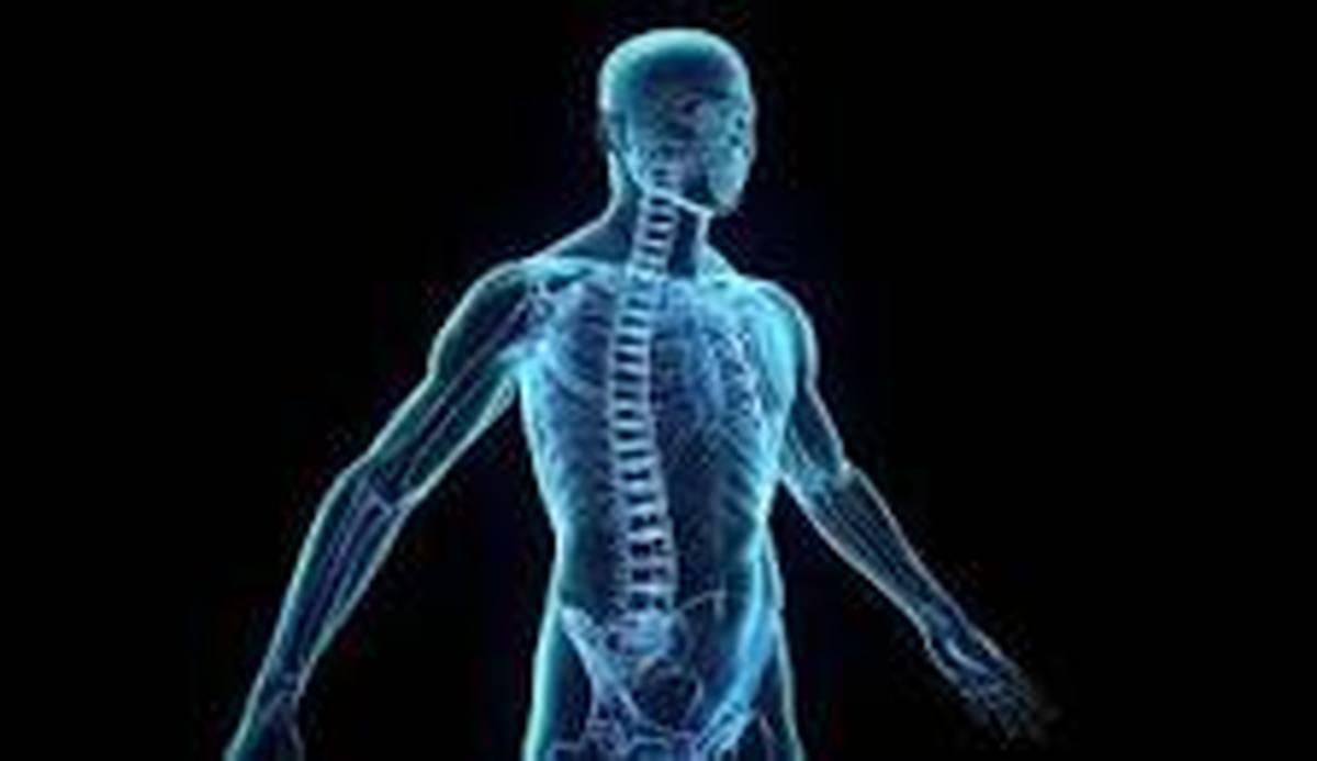 راهنمای تقویت سیستم ایمنی بدن