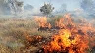 جنگل ها و مراتع گچساران در آتش میسوزد