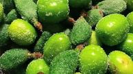 مصرف گوجه سبز موجب بروز مشکلات برای افرادخاص