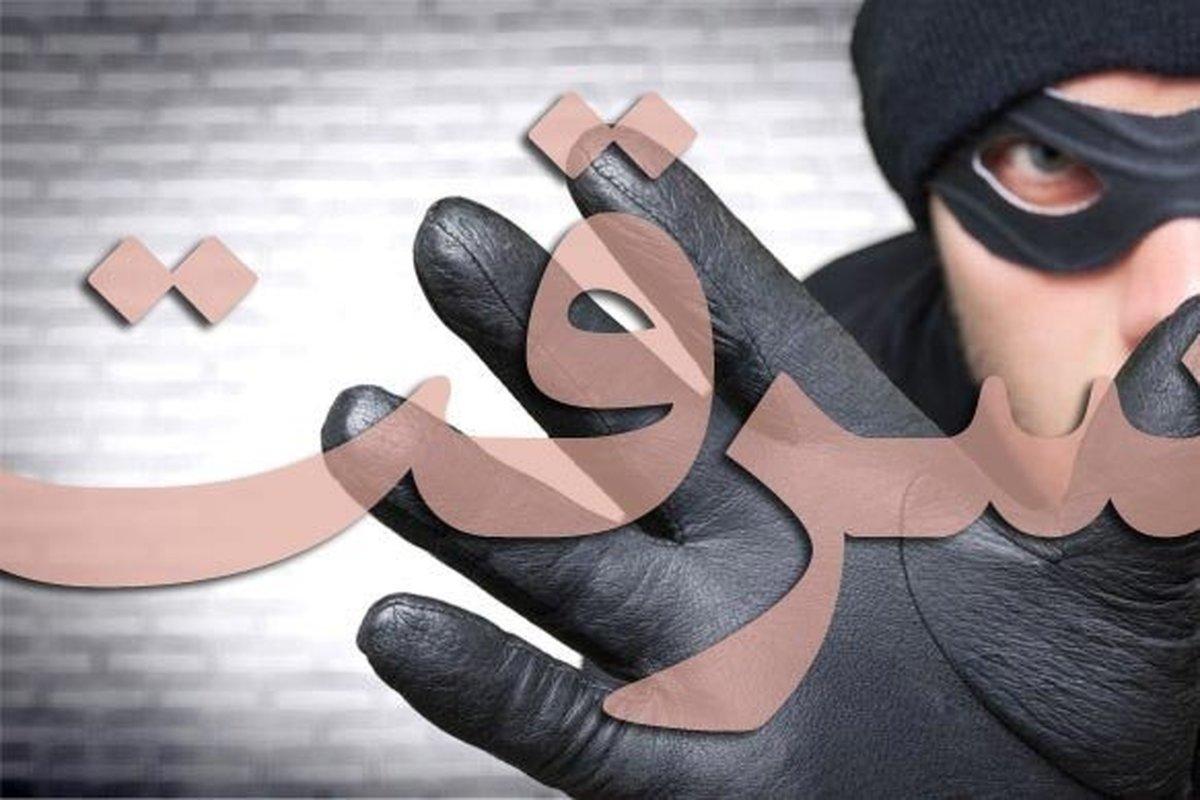 سرقت  | مردی که به خاطر هزینه ی زایمان همسرش دزدی کرد