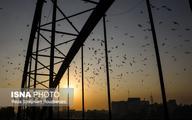 پیشبینی کاهش دو روزه دما در خوزستان