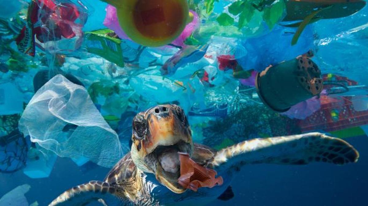 "کانادا: پلاستیک یکبار مصرف، ""ممنوع"" شد"