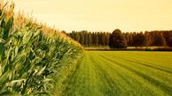 چقدر از خاک ایران مناسب کشاورزی است؟   چشم انداز کشاورزی