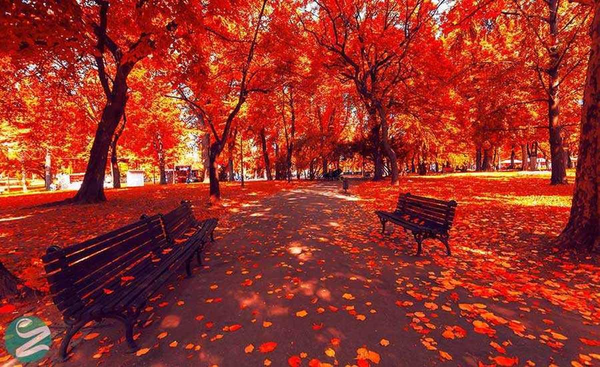 احتمال پاییز پر بارش فقط ۱۰ درصد است
