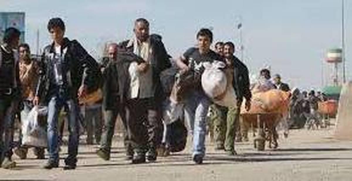 فرار افغان ها از ایران!   چرا مهاجران افغان ایران را ترک می کنند؟