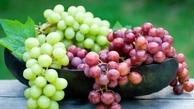 میوه تابستانی که به عنوان یک ضد آفتاب عمل میکند