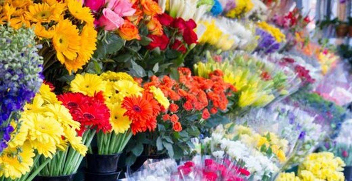 تقاضا برای خرید گل در بازار کمتر از 10در صد می رسد