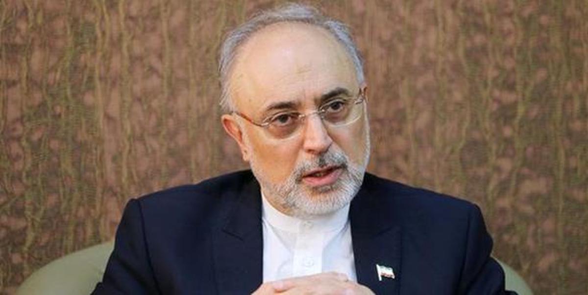 مذاکرات خوب جلو میرود  | دست ایران از نظر فنی بسیار پر است