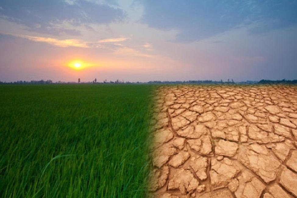 خشکسالی بهاری، رگبار تابستانی؛ تغییر اقلیم در راهست