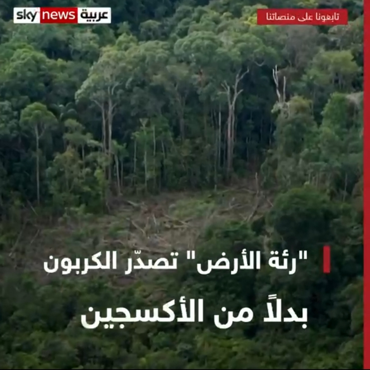 جنگلهای آمازون در یک دهه اخیر بیش از جذب دیاکسید کربن، آن را منتشر کردهاند + ویدئو
