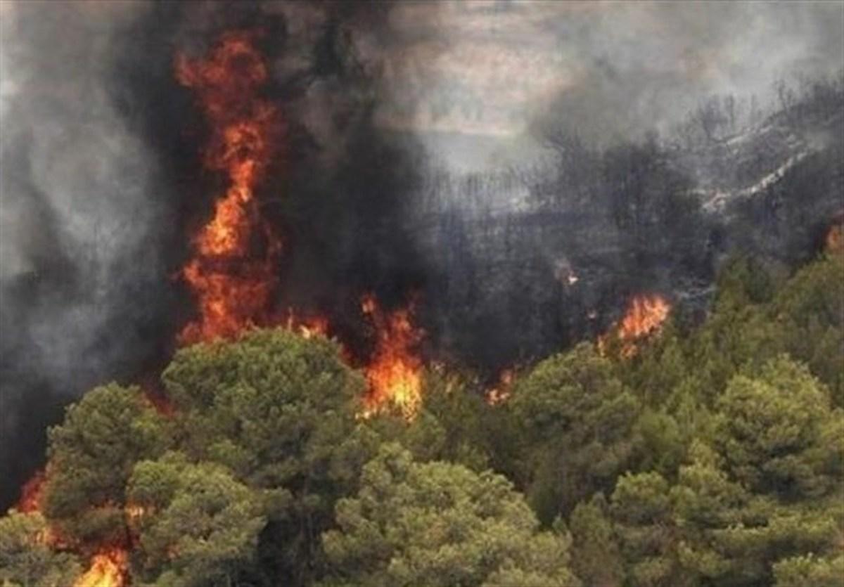 مهار آتش جنگلهای گلستان  |  ۸۰ نیروی امدادی در حال تلاش هستند